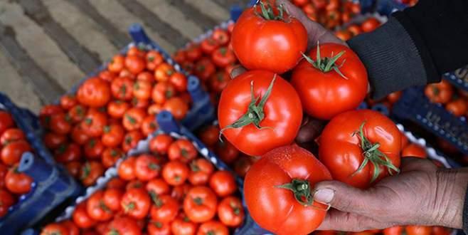 Rusya'dan domates açıklaması