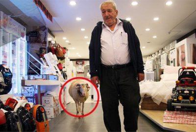 Kesmekten vazgeçti, alışverişe bile beraber gidiyorlar