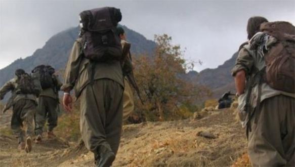 Almanya'dan PKK'ya silah sinyali