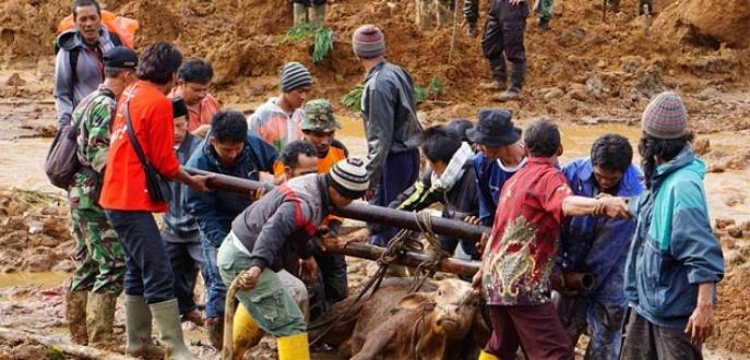 Endonezya'da toprak kayması