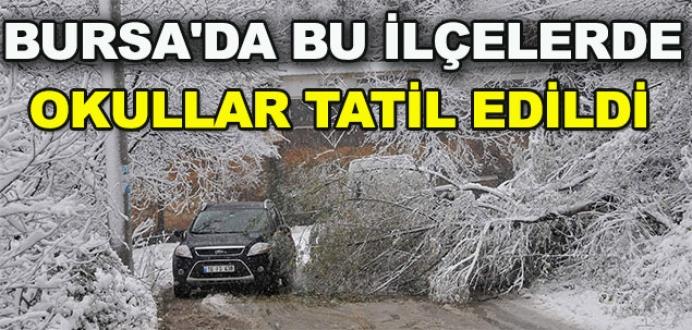 Bursa'da bu ilçelerde kar tatili ilan edildi!