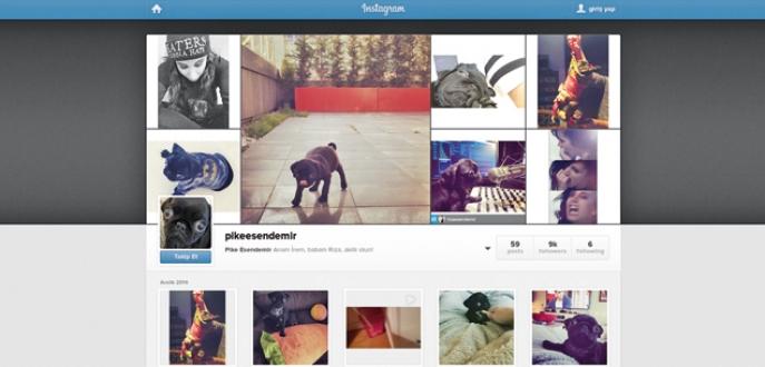 Köpeğine Instagram hesabı açtı