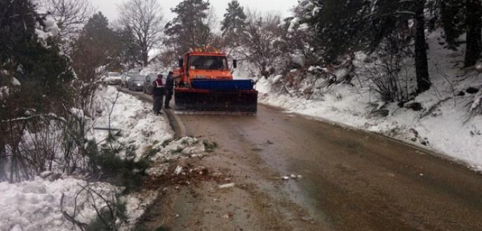 Devrilen ağaç Uludağ yolunu trafiğe kapattı
