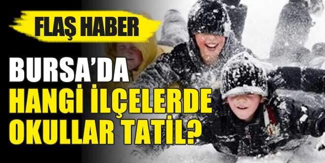 Bursa'da iki ilçede daha okullar tatil!