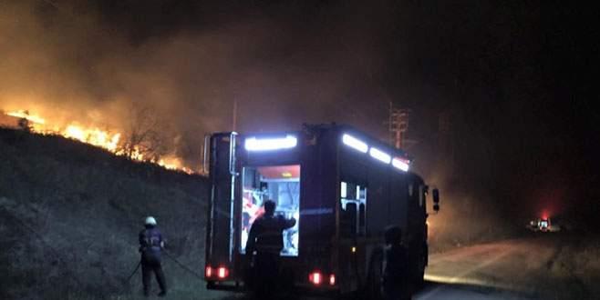İzmarit ormanı yaktı