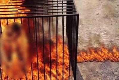 Ürdün'den IŞİD'e idam misillemesi