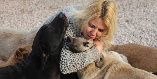 Hayvansever Sibel'i ağlattılar