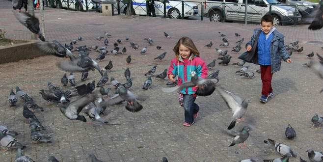 Bursa'da güvercinler çocukların neşe kaynağı