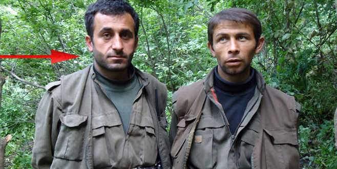 Üst düzey PKK'lı Türkiye'de yakalandı