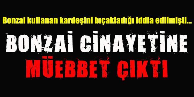 Bursa'da bonzai cinayetine müebbet hapis!