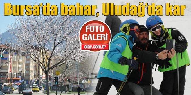 Bursa'da bahar, Uludağ'da kar