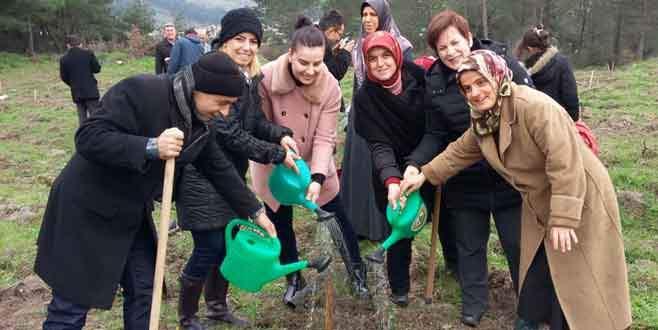 """Bursa'da """"kadın"""" için dayanışma"""