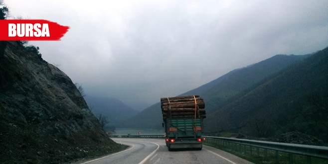 Tomruk yüklü kamyonlar tehlike saçıyor