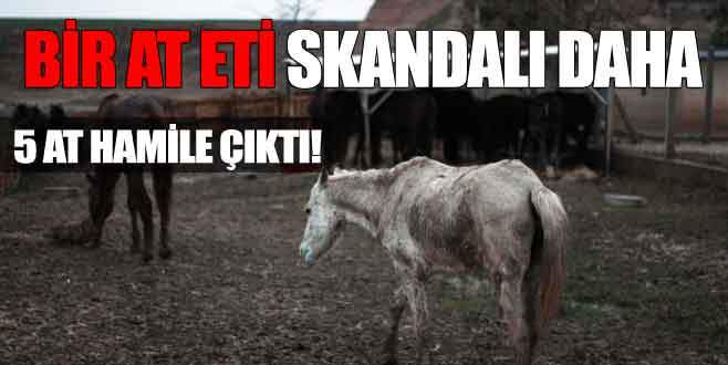 At eti skandalı