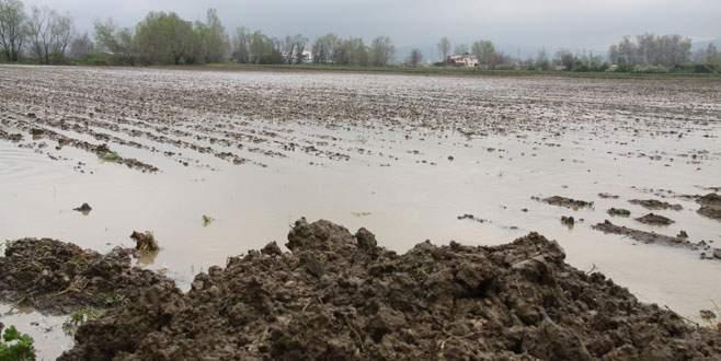 Bursalı çiftçiyi yağmur ve kar suyu vurdu