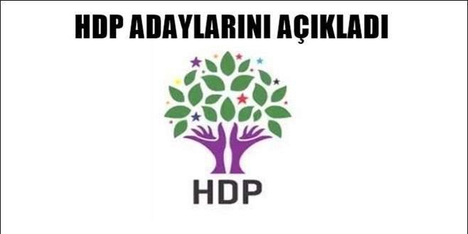 HDP'nin Bursa aday listesi belli oldu