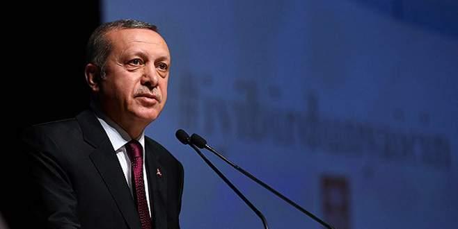 'Türkiye düşmanlığının dışa vurumundan ibaret'