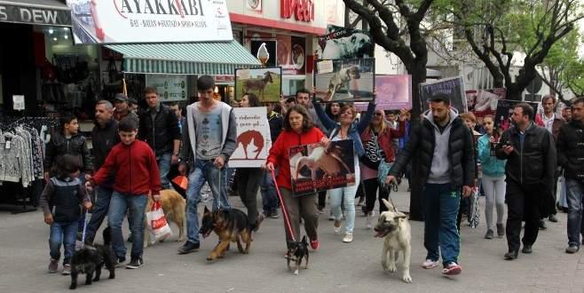 Hayvan hakları ve ölümleri için yürüdüler