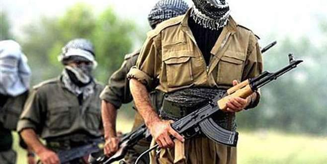 Bitlis ve Şırnak'ta 2 terörist teslim oldu