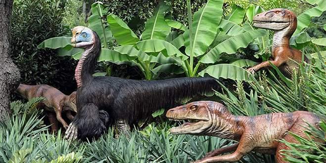 """100 milyon yıllık """"dinozor yolu"""" bulundu"""