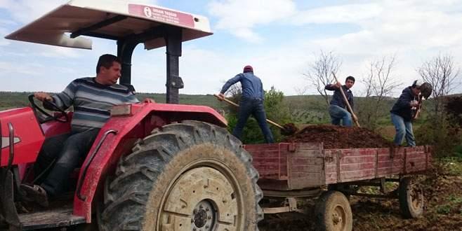 Bursalı çiftçi eskiye dönüyor