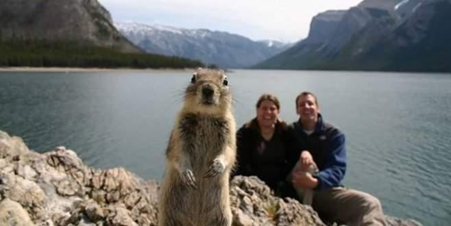 Fotoğrafların davetsiz misafirleri