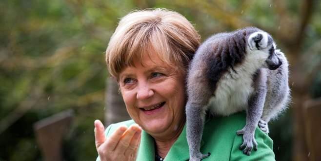 Merkel'in hayvan sevgisi