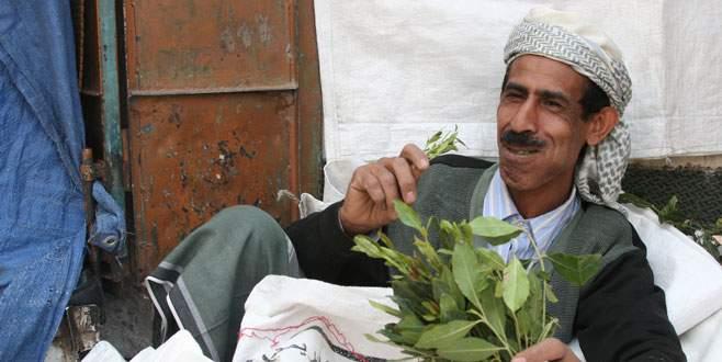 Yemen'de bu bitki yasaklandı