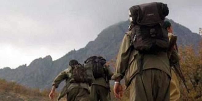 Muş'ta kaçırılan 2 kişi serbest bırakıldı