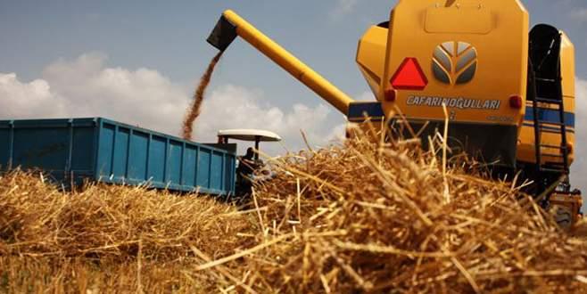 Buğdayda 80 kuruş beklentisi