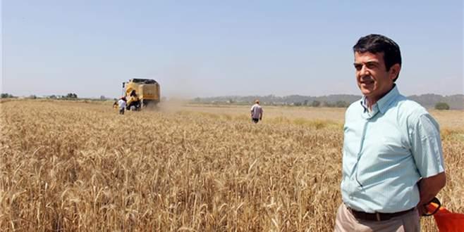 'Antalya buğdayını arıyor'