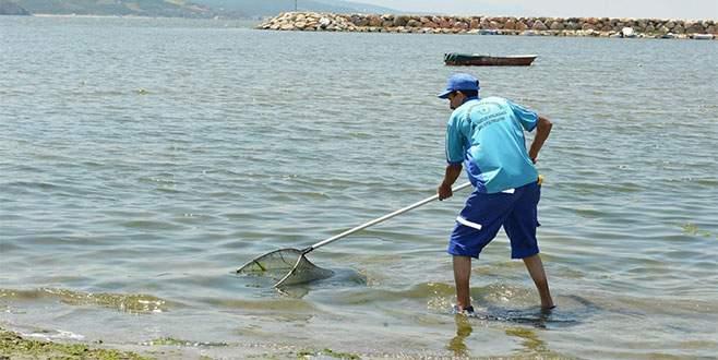 Bursa sahilleri kirlilikten arındı