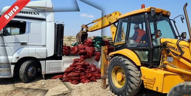 Ele geçirilen 10 ton midye imha edildi
