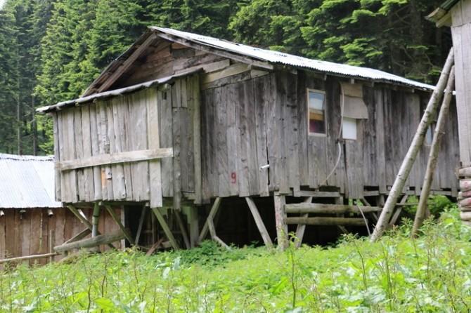 Düzce'de Yayla Evleri Tespit Edildi