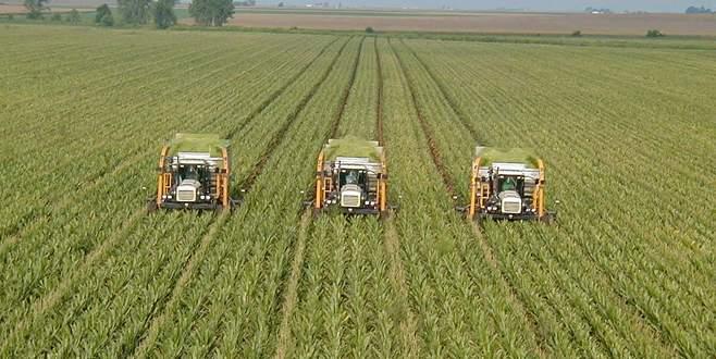Tarım alanları yok oluyor
