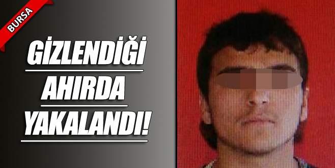 Bursa'da 2 genç kızı taciz etti!