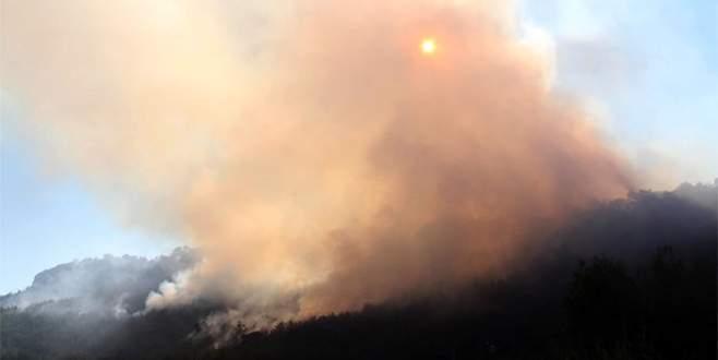 Orman yangını 12 saat sürdü