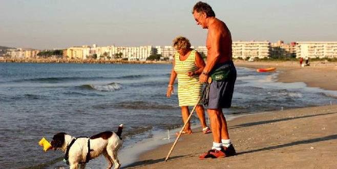 Bu plaja sadece köpekler girebilecek