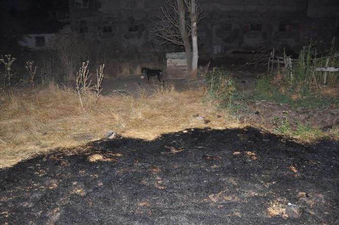 Sivas'ta Anız Yangını