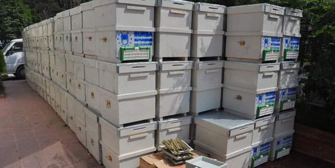 Arı üreticilerine kovan desteği