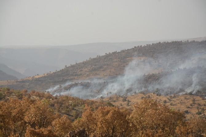 Mardin Bagok Dağında Yangın