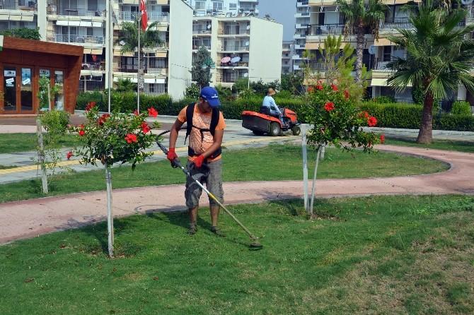 Erdemli Belediyesi'nde Periyodik Park Bakımları Devam Ediyor