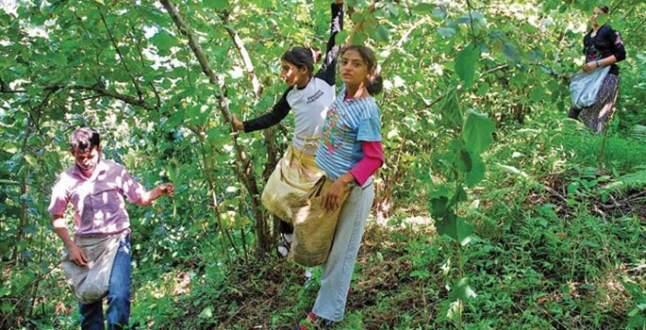 Çocuk işçi çalıştıranlara ceza