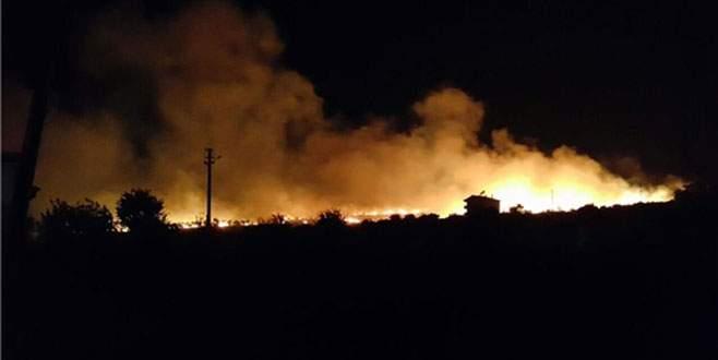 Armutlu'da zeytinlik alanda yangın
