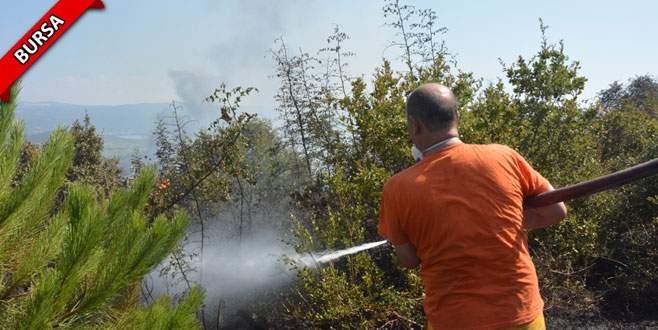 Reklam tabelası asarken 5 hektar çam ormanını yaktılar