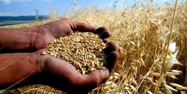 Çiftçide enflasyon yüzde 5'lere indi