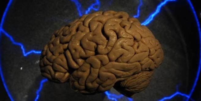 Laboratuvarda insan beyni üretildi