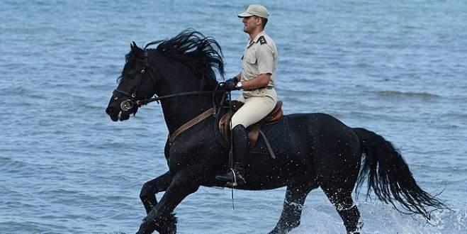 Süvari atları Bursa'da yetiştiriliyor