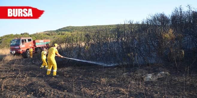 Orman yangınları korkuttu