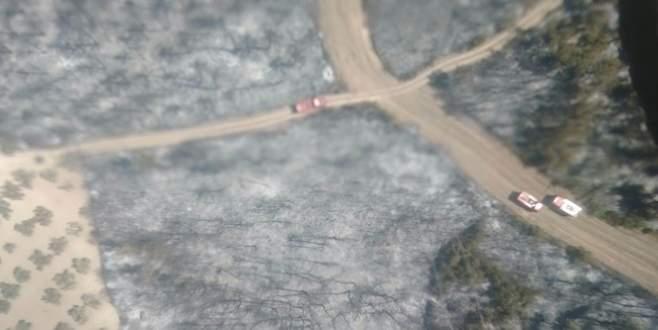 Rüzgar çıktı, Bursa'da orman yangını yeniden başladı